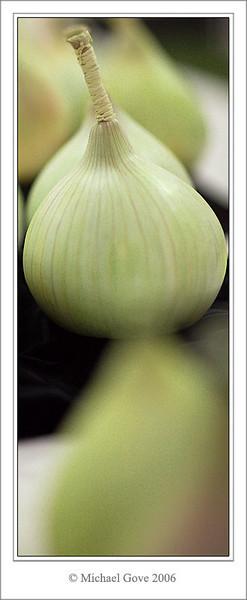 The prize onion (69168664).jpg