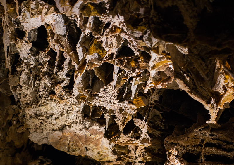 Wind Cave_02_NP__MG_5717.jpg