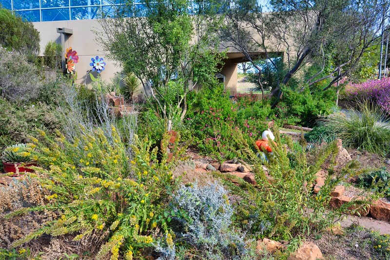 Texas Native Plant Garden at Amarillo Botanical Gardens