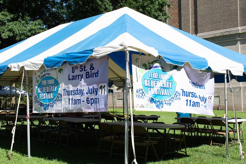 Blueberry_Festival-8433.jpg