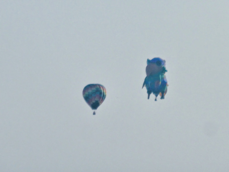 233 Michigan August 2013 - Hot Air Balloons.jpg