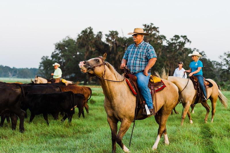 Barthle Cattle-2 (31 of 102).jpg