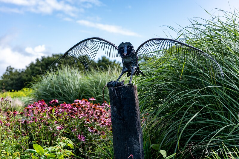 850_Sussex Prairie Gardens-8502642.jpg