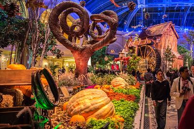 2013.11 Las Vegas