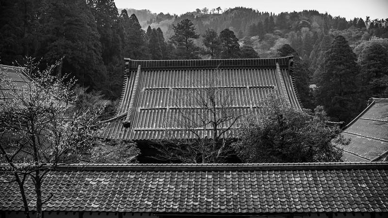 Eiheiji Temple 10041313 .jpg