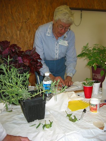 Spring 05 MG Propogation Class & Graduation