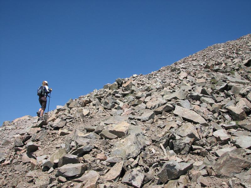 Torreys Peak 7-13-06 153.jpg