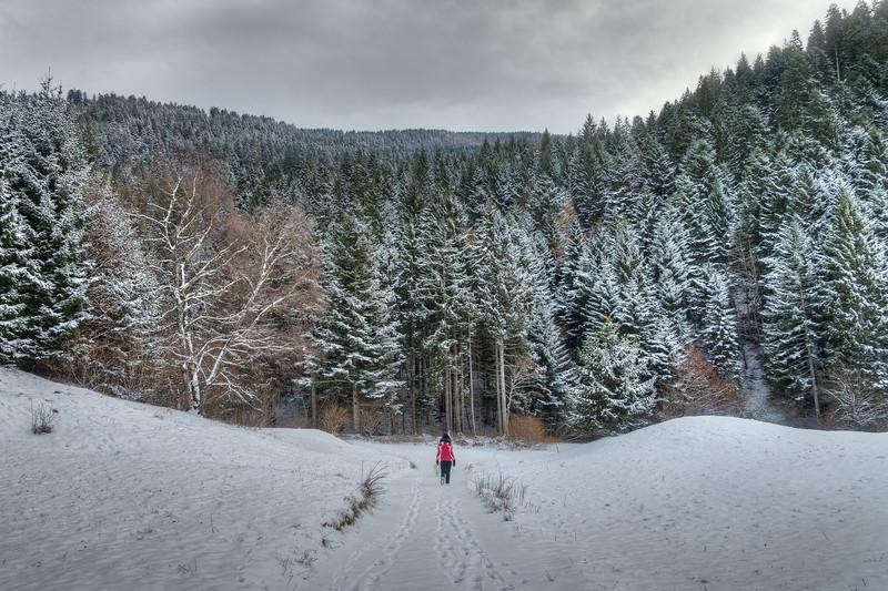 Into the Wild - Andalo, Trento, Italy - December 28, 2014