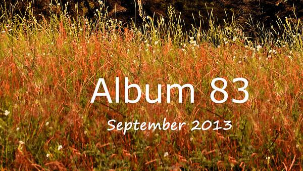 ALBUM 83