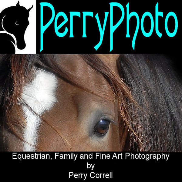 PerryPhoto ad3