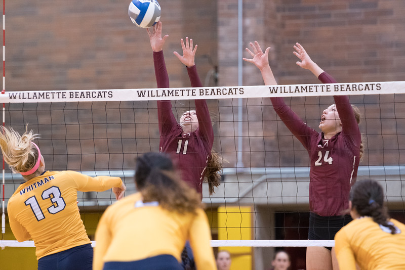 Willamette Bearcats vs Whitman