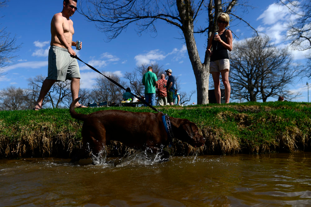 . Michael Monthan walks his dog Kodi (a mastador) in Smith\'s ditch at Washington Park. Temperatures reached the low 80s in Denver. (Photo by AAron Ontiveroz/The Denver Post)