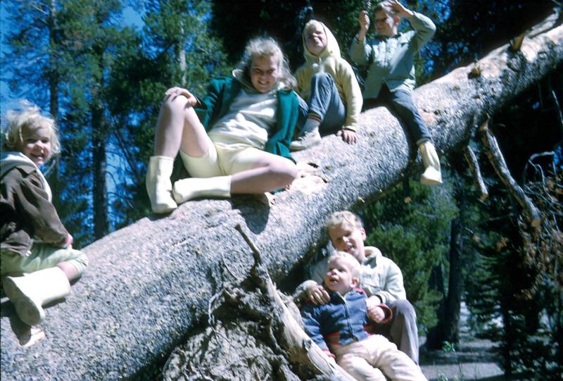 0358 - Kids (7-65).jpg