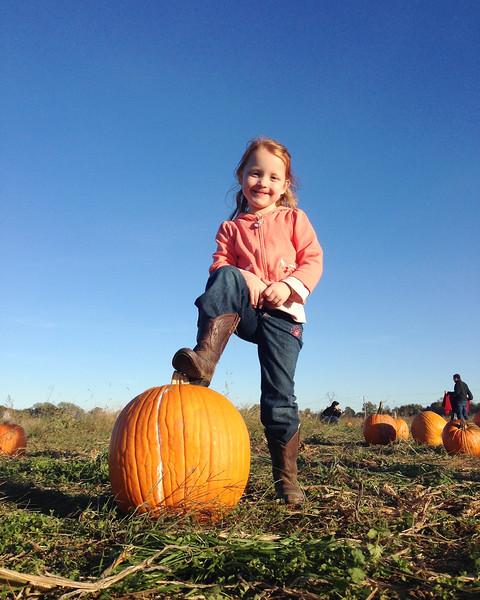 Pumpkin Pickin' 2014