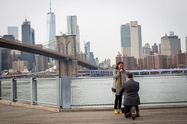 Michael Jane Carousel Proposal, Brooklyn New York.