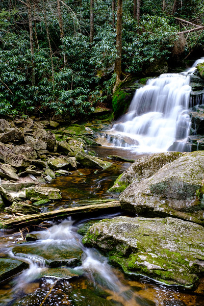 20180504-05 Blackwater Falls State Park 021.jpg