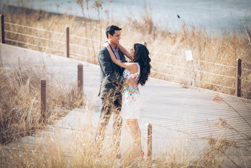 Le Cape Weddings - Trisha and Sashin Engagements_-13.jpg