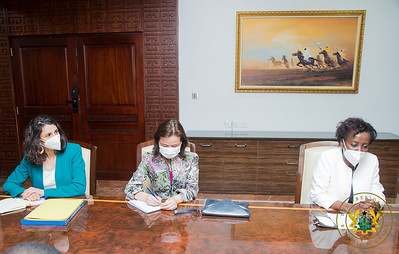 Visite au président SEM Nana Akufo-Addo - Accra