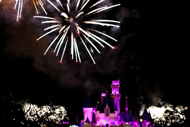 2010 - Jan - 18-24 - Family Disneyland Trip-9999