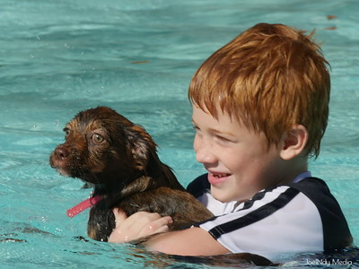 Events - Prairie Lakes Pool Day for Dogs 10.7.2017