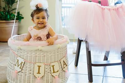 Mila's First Birthday