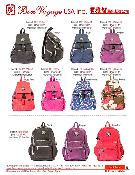 BackPack p53-X2.jpg