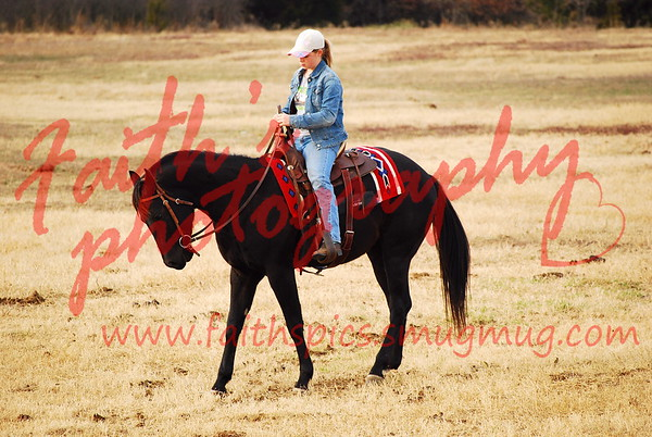 S&D Ranch Horses 011608