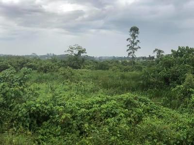 2019 - Uganda - Kampala