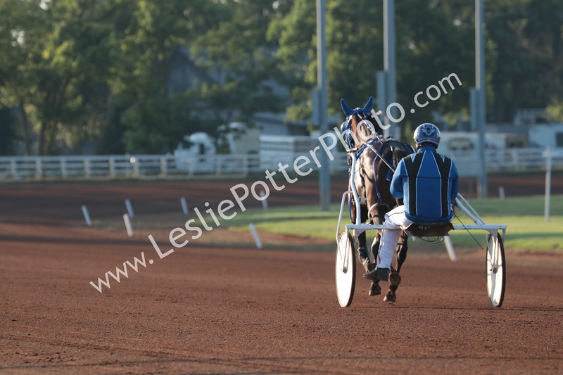 2019 Harness Racing at the Red Mile
