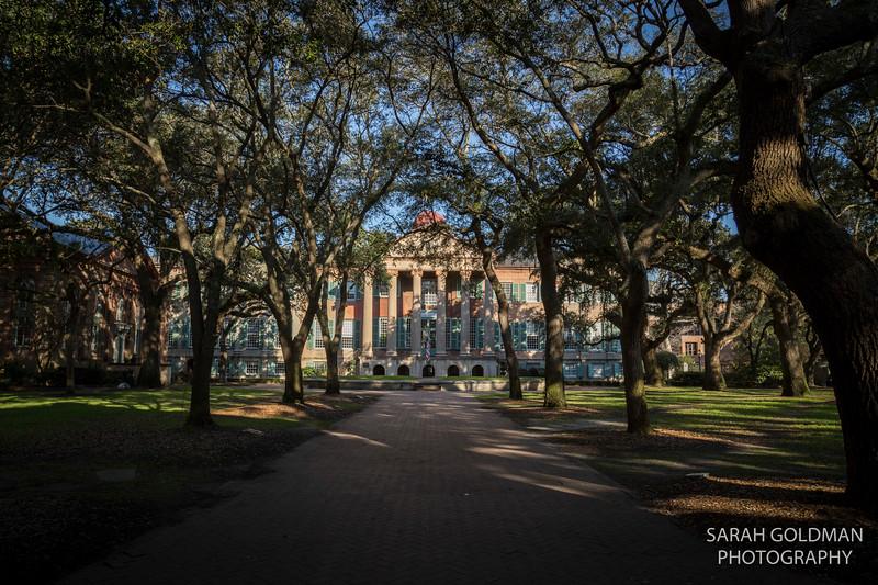 photographers-in-Charleston-SC (73).jpg