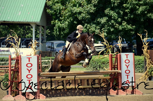 2015 Warrenton Horse Show