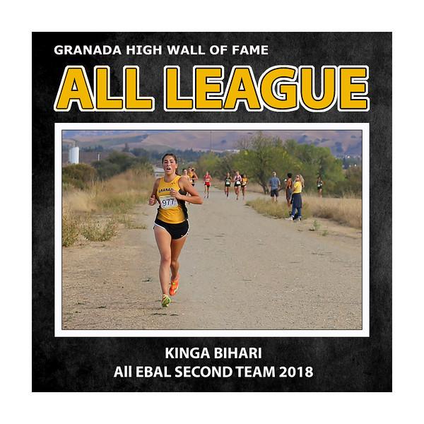 Bihari Kinga GHS All League 2018.jpg