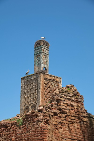 morocco 2018 copy61.jpg