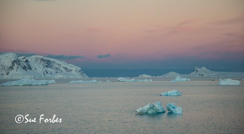 Day 5 Gerlache Strait