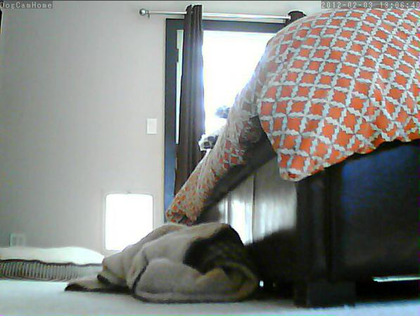 Screen Shot 2012-02-03 at 12.04.07 PM.png