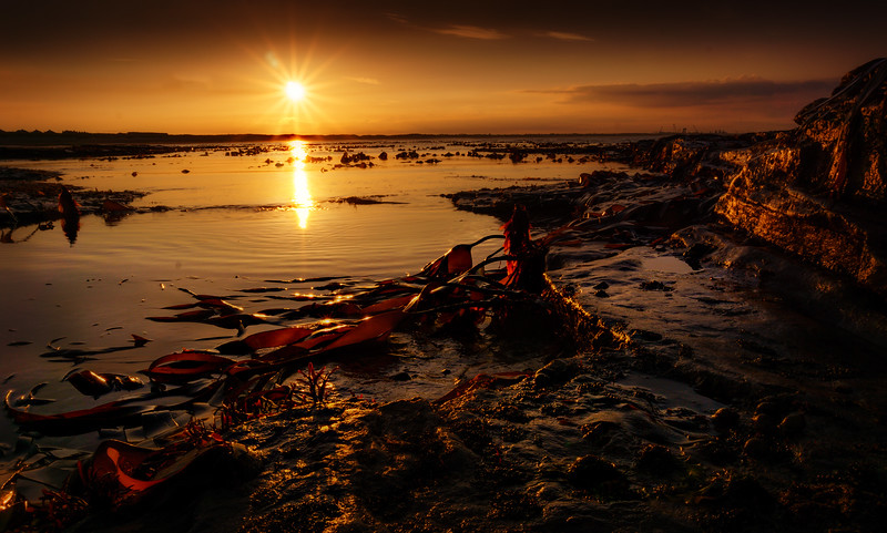 Sunrise and Sunset (101).jpg