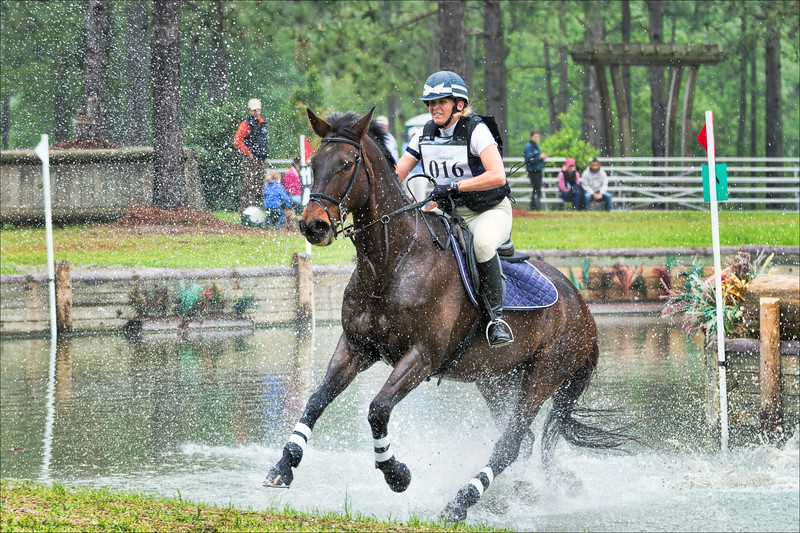 2011-04-23 Longleaf Pines Horse Trials 210-Modifier.jpg