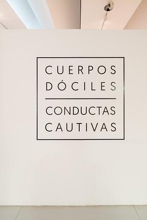 Cuerpos Dociles- Conductas Cautivas