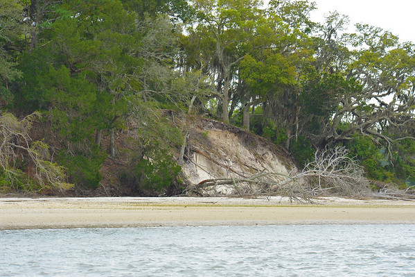 Terrapin Point - Cumberland Island 04-02-11