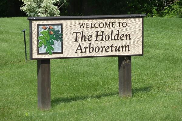 Holden Arboretum 07-2017