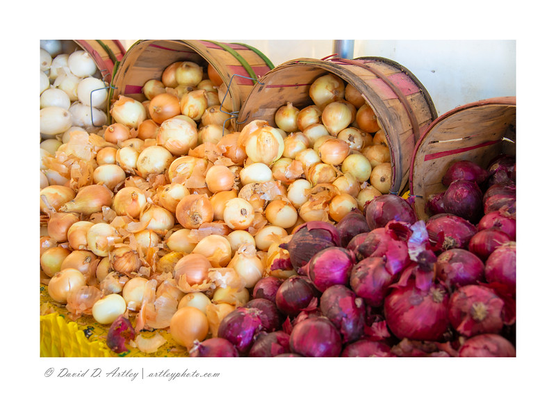 onions on display, Pueblo Chili and Frijole Festival