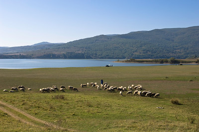 Farming by Arda River near Madzharovo nature reserve, Bulgaria