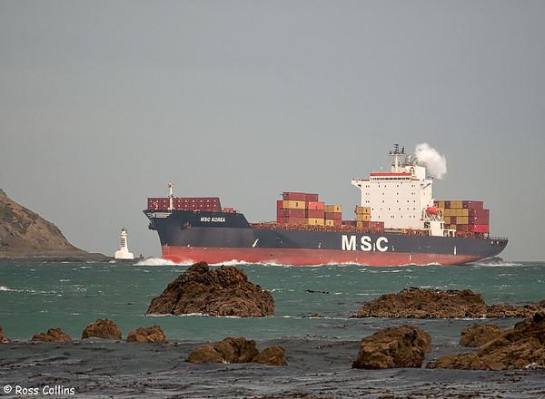 'MSC Korea'