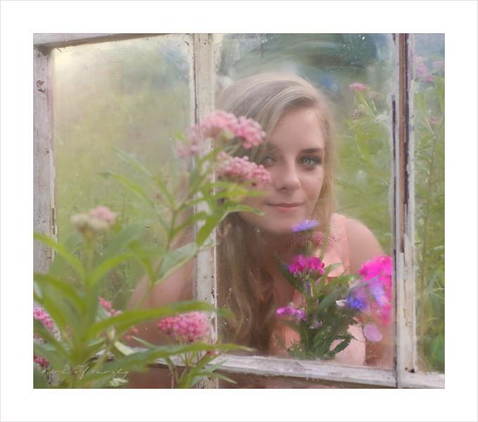 Penny Window copy.jpg