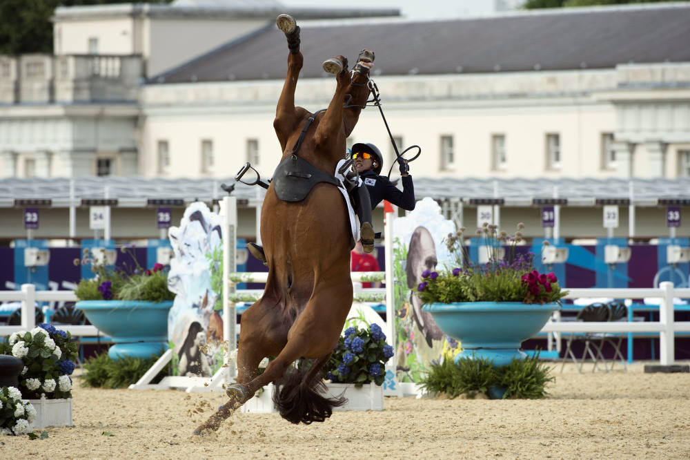 Description of . South Korea's Hwang Woojin loses control of his horse Shearwater Oscar during the Show Jumping event of the Modern Pentathlon during the 2012 London Olympics at the Equestrian venue in Greenwich Park, London, on August 11, 2012. AFP PHOTO / JOHN  MACDOUGALL/AFP/Getty Images