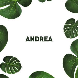 Aniversário | Andrea GIFS