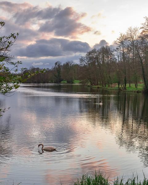Stowe Gardens 614 - Version 8.jpg
