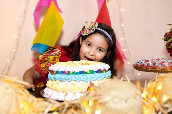 Aniversário Ana Luisa 2020