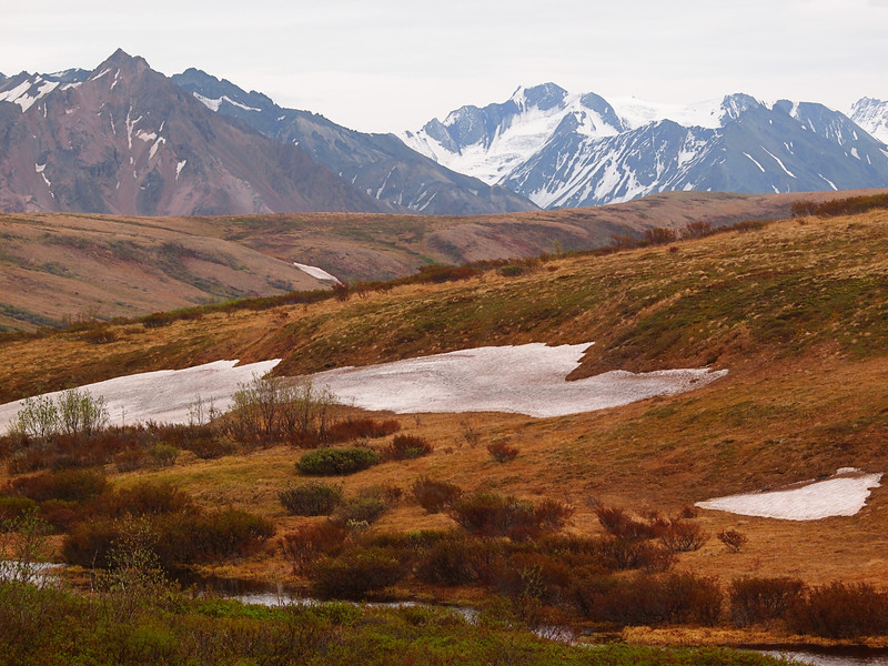 Denali National Park Landscape  By Valerie Mellema  June 7, 2011