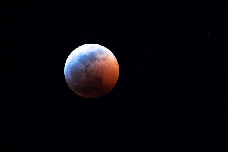 LauraLeeBradford-20190120-LunarEclipse-5576.jpg